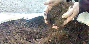Topsoil and Bark Mulch